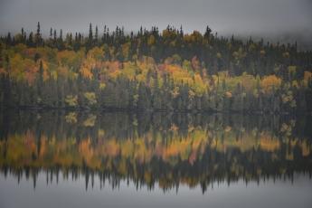 Reflets des couleurs d'automne