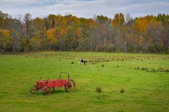L'agriculture est très présente dans cette région de l'Ontario