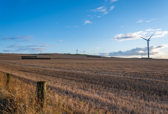 Les champs aux alentours de Dunnottar Castle